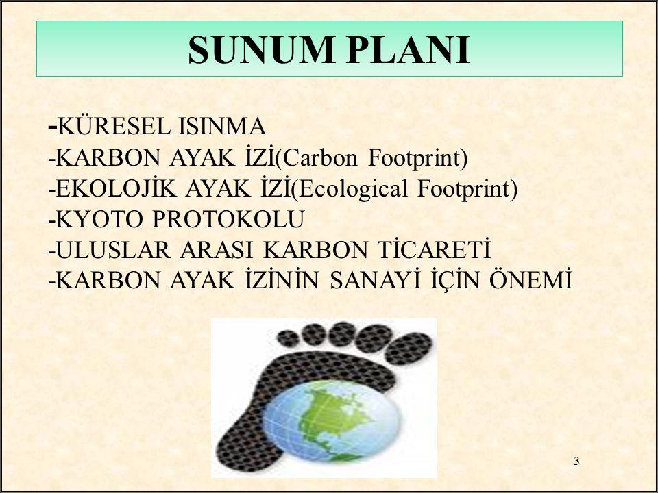 SUNUM PLANI -KÜRESEL ISINMA -KARBON AYAK İZİ(Carbon Footprint)
