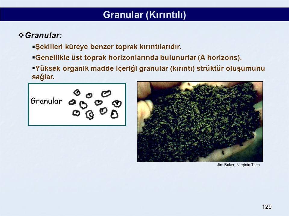 Granular (Kırıntılı) Granular: