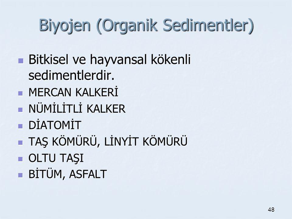 Biyojen (Organik Sedimentler)