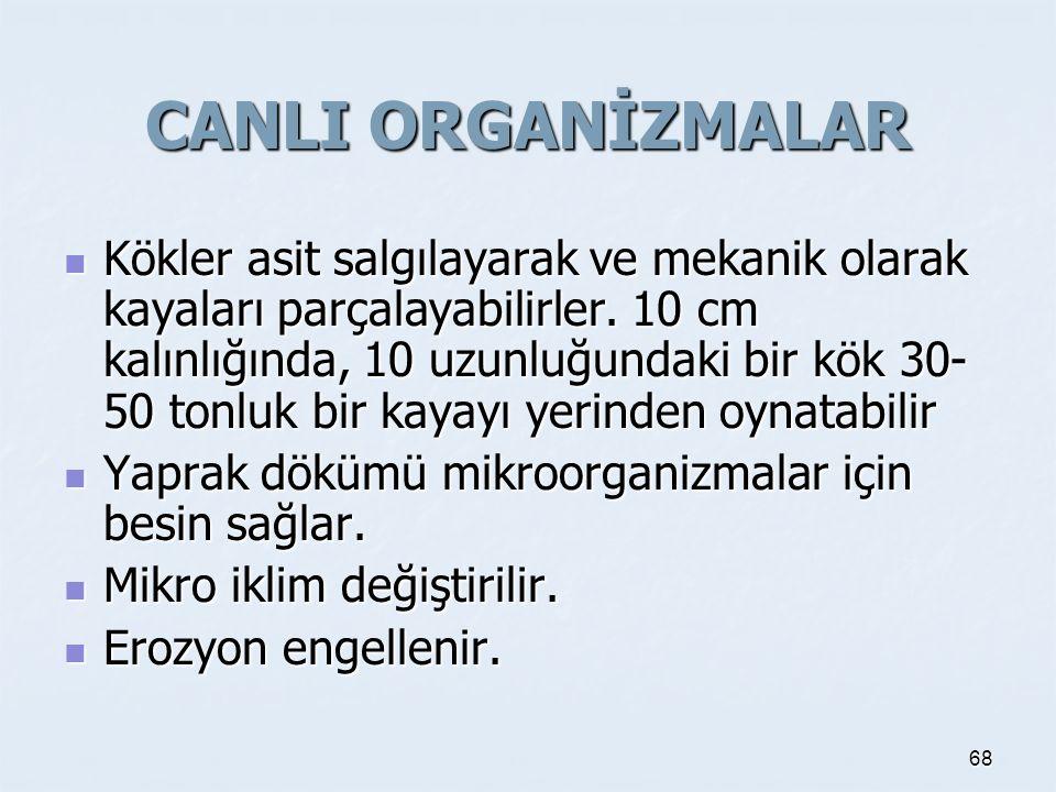 CANLI ORGANİZMALAR