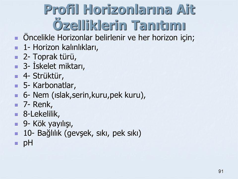 Profil Horizonlarına Ait Özelliklerin Tanıtımı