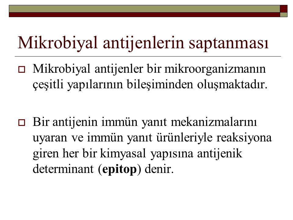 Mikrobiyal antijenlerin saptanması