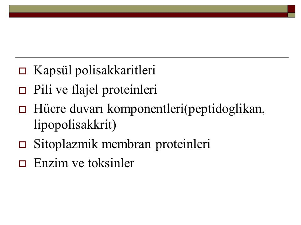 Kapsül polisakkaritleri