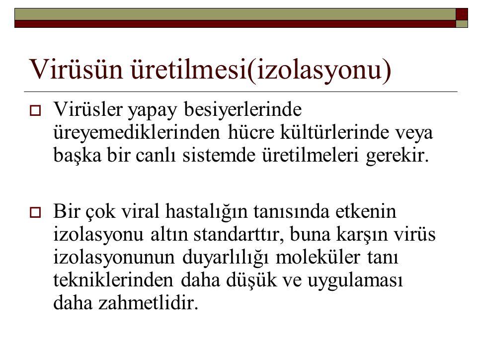 Virüsün üretilmesi(izolasyonu)