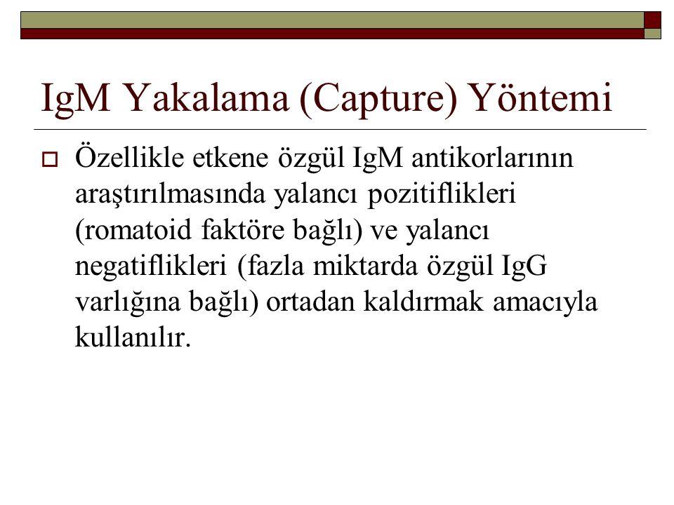 IgM Yakalama (Capture) Yöntemi