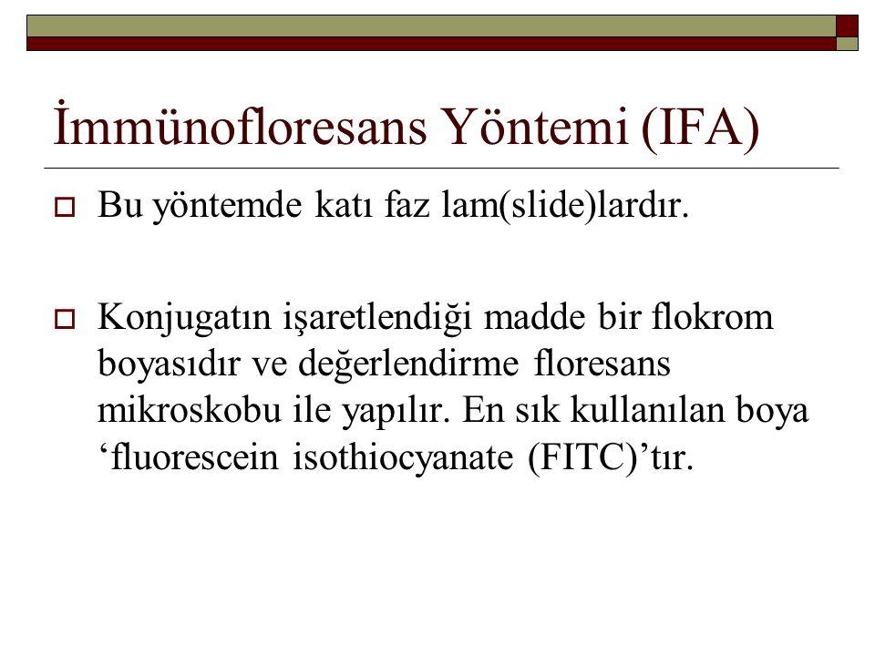 İmmünofloresans Yöntemi (IFA)