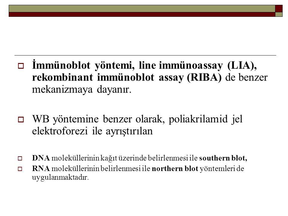 İmmünoblot yöntemi, line immünoassay (LIA), rekombinant immünoblot assay (RIBA) de benzer mekanizmaya dayanır.