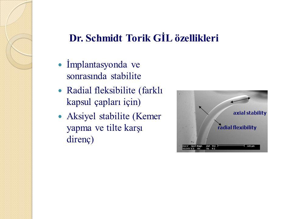 Dr. Schmidt Torik GİL özellikleri