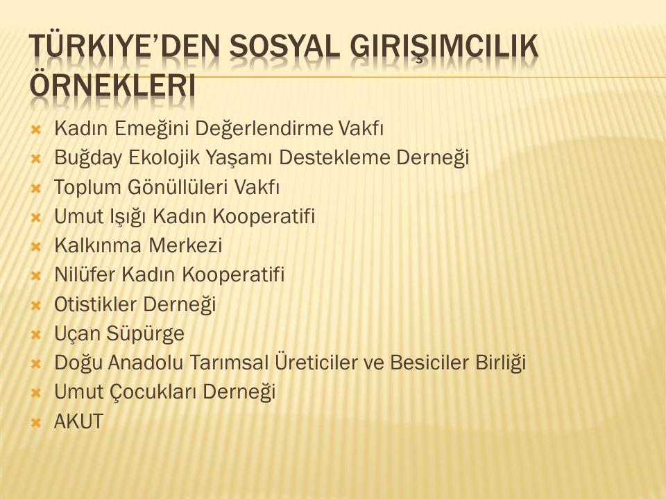 Türkiye'den sosyal girişimcilik örnekleri