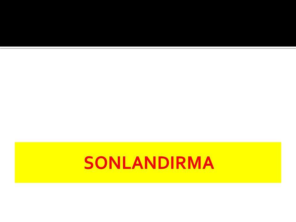 SONLANDIRMA