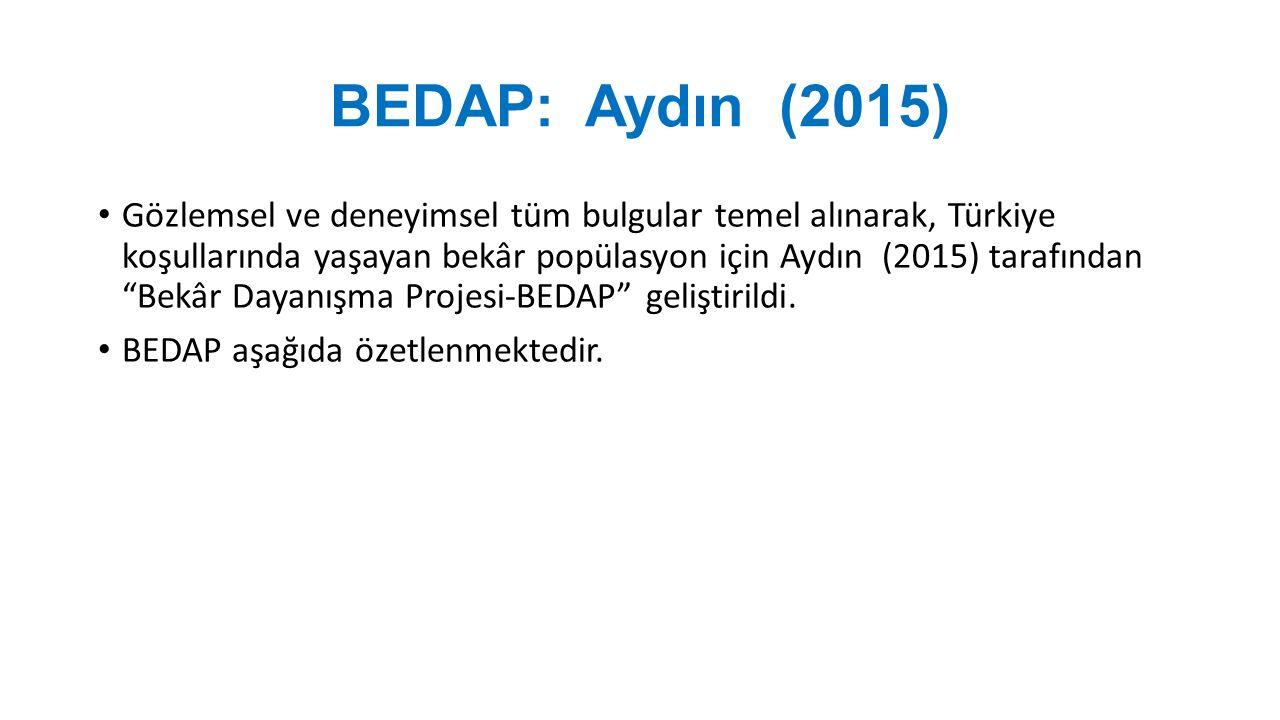 BEDAP: Aydın (2015)