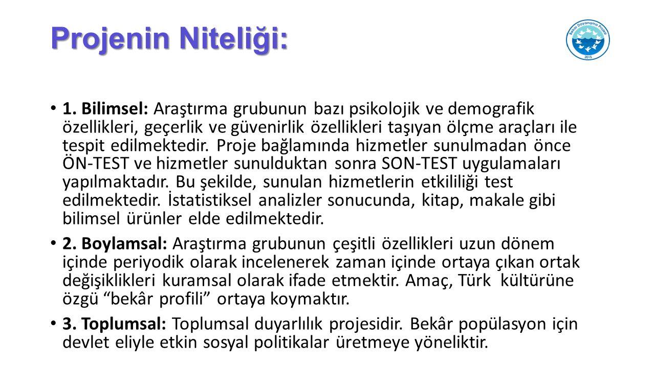 Projenin Niteliği: