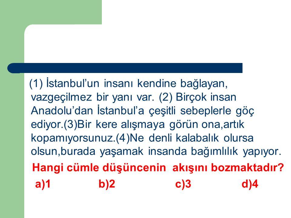 (1) İstanbul'un insanı kendine bağlayan, vazgeçilmez bir yanı var