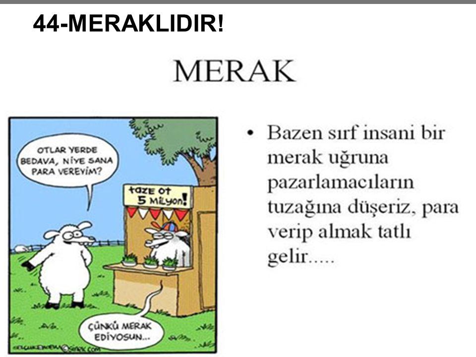 44-MERAKLIDIR!