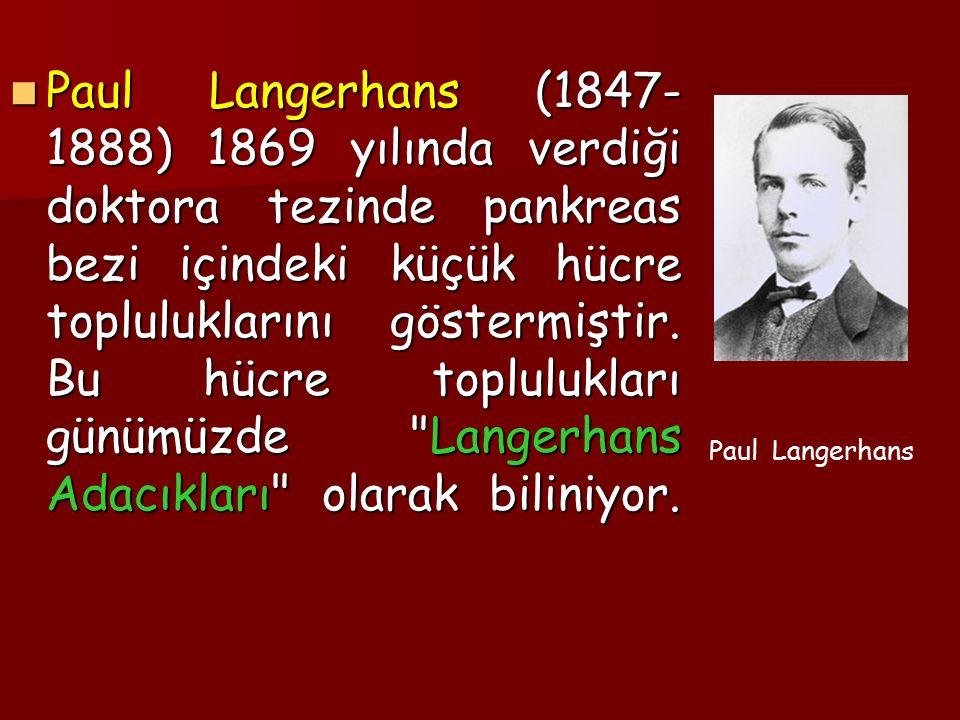 Paul Langerhans (1847-1888) 1869 yılında verdiği doktora tezinde pankreas bezi içindeki küçük hücre topluluklarını göstermiştir. Bu hücre toplulukları günümüzde Langerhans Adacıkları olarak biliniyor.