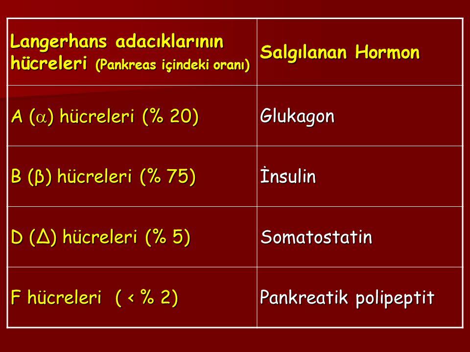 Langerhans adacıklarının hücreleri (Pankreas içindeki oranı)