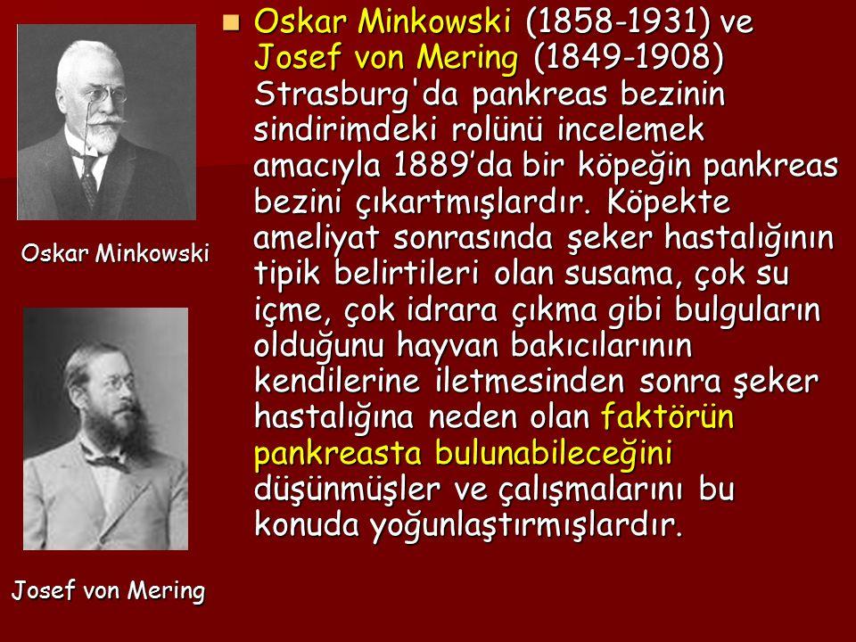 Oskar Minkowski (1858-1931) ve Josef von Mering (1849-1908) Strasburg da pankreas bezinin sindirimdeki rolünü incelemek amacıyla 1889'da bir köpeğin pankreas bezini çıkartmışlardır. Köpekte ameliyat sonrasında şeker hastalığının tipik belirtileri olan susama, çok su içme, çok idrara çıkma gibi bulguların olduğunu hayvan bakıcılarının kendilerine iletmesinden sonra şeker hastalığına neden olan faktörün pankreasta bulunabileceğini düşünmüşler ve çalışmalarını bu konuda yoğunlaştırmışlardır.