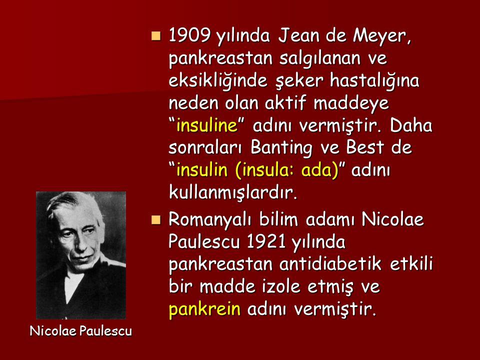 1909 yılında Jean de Meyer, pankreastan salgılanan ve eksikliğinde şeker hastalığına neden olan aktif maddeye insuline adını vermiştir. Daha sonraları Banting ve Best de insulin (insula: ada) adını kullanmışlardır.