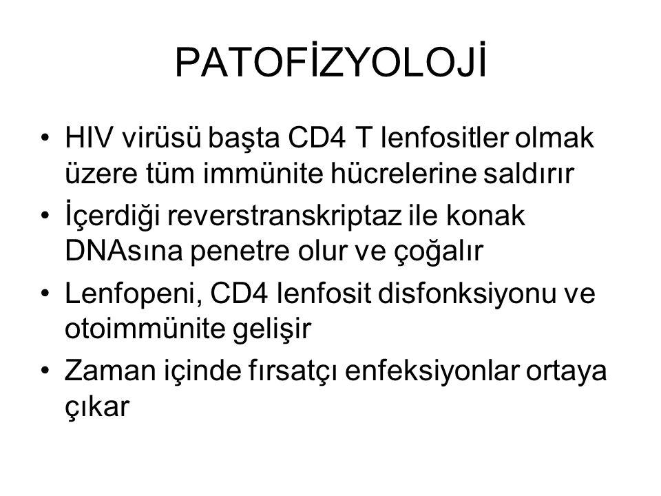 PATOFİZYOLOJİ HIV virüsü başta CD4 T lenfositler olmak üzere tüm immünite hücrelerine saldırır.