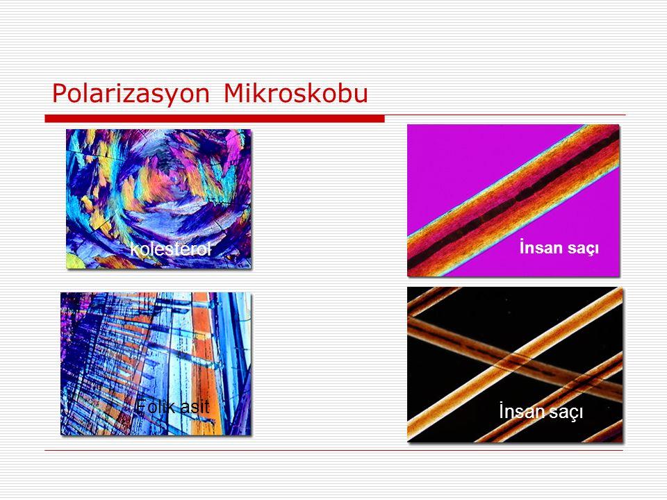 Polarizasyon Mikroskobu