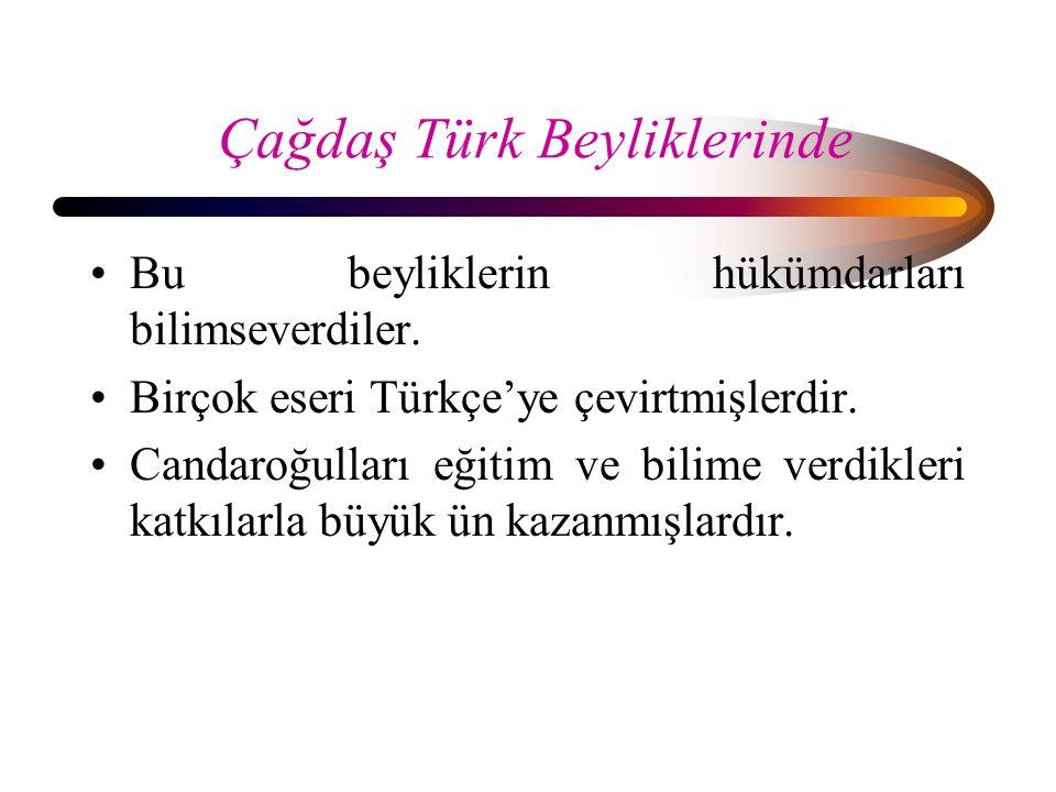 Çağdaş Türk Beyliklerinde