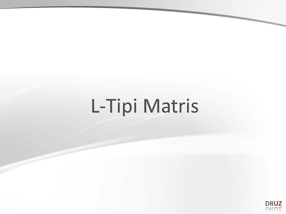 L-Tipi Matris DRUZ 162 162