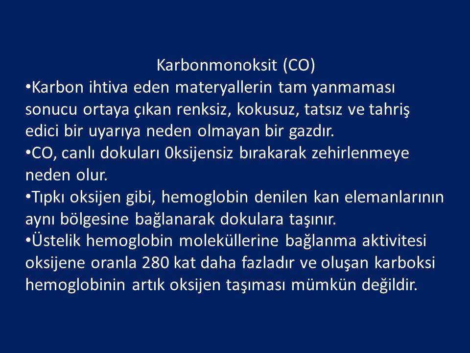 Karbonmonoksit (CO)