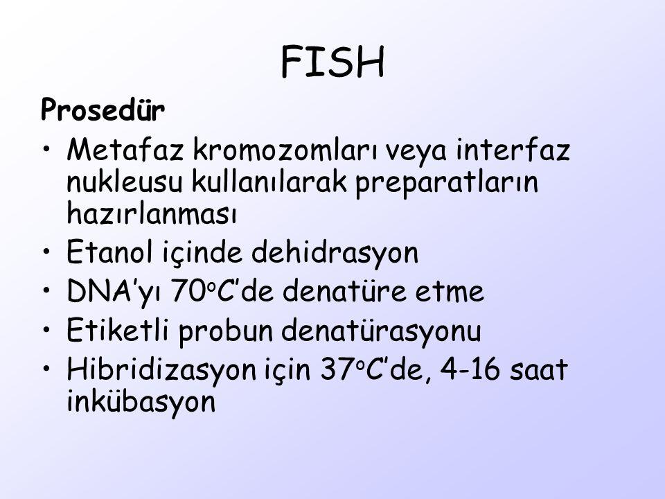 FISH Prosedür. Metafaz kromozomları veya interfaz nukleusu kullanılarak preparatların hazırlanması.