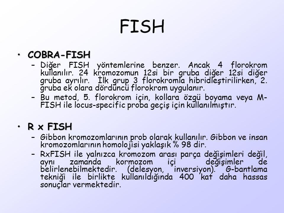 FISH COBRA-FISH R x FISH