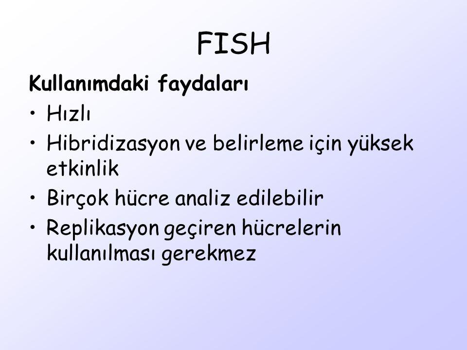 FISH Kullanımdaki faydaları Hızlı
