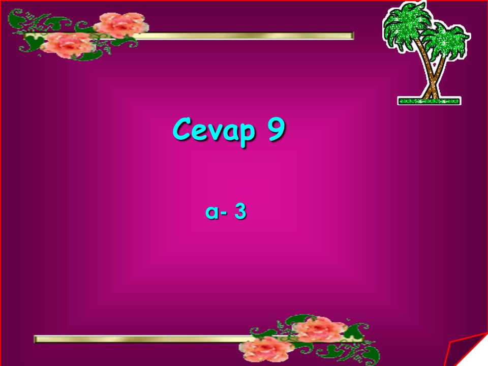 Cevap 9 a- 3
