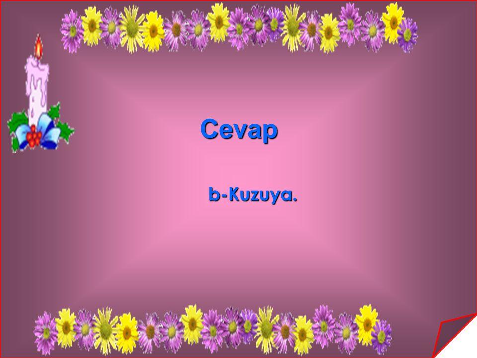 Cevap b-Kuzuya.