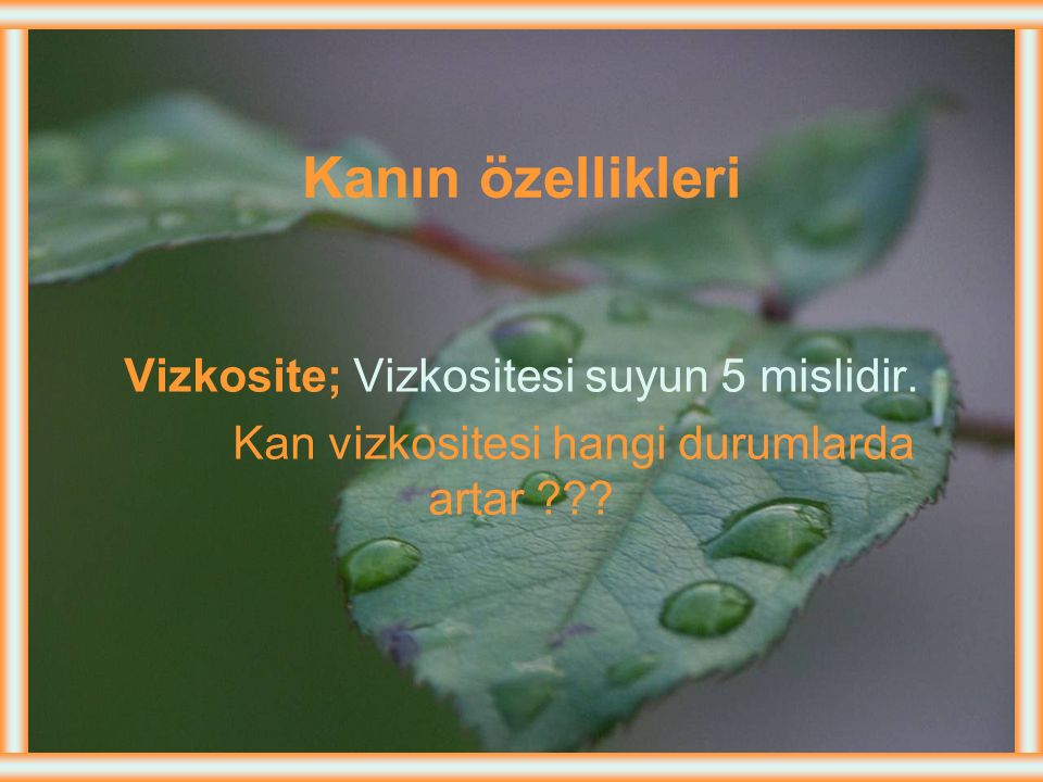 Kanın özellikleri Vizkosite; Vizkositesi suyun 5 mislidir.