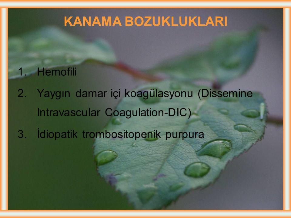 KANAMA BOZUKLUKLARI Hemofili
