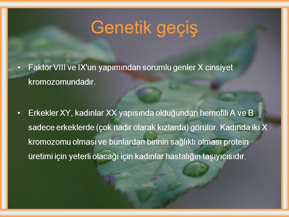 Genetik geçiş Faktör VIII ve IX un yapımından sorumlu genler X cinsiyet kromozomundadır.