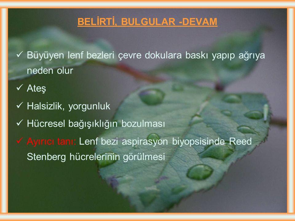 BELİRTİ, BULGULAR -DEVAM