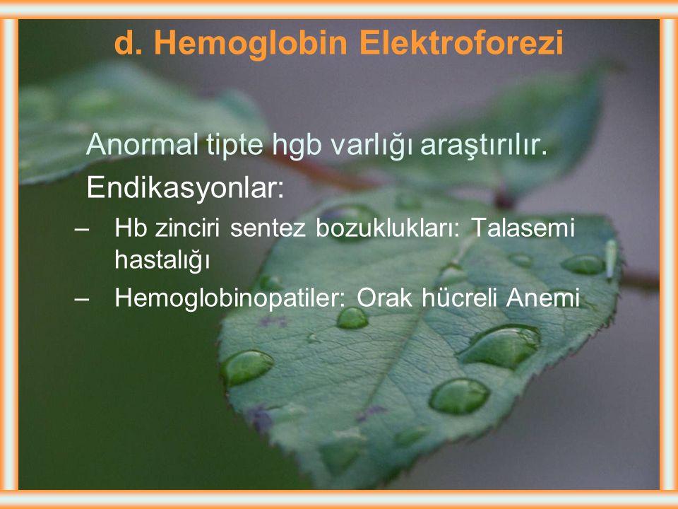 d. Hemoglobin Elektroforezi