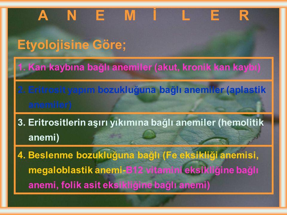 A N E M İ L E R Etyolojisine Göre;