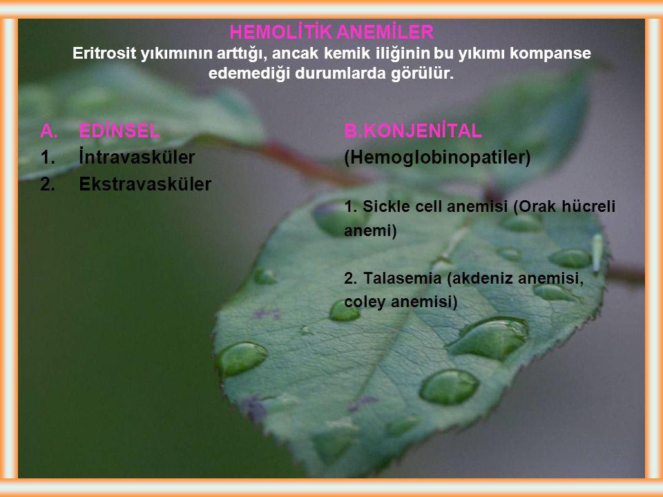 (Hemoglobinopatiler)