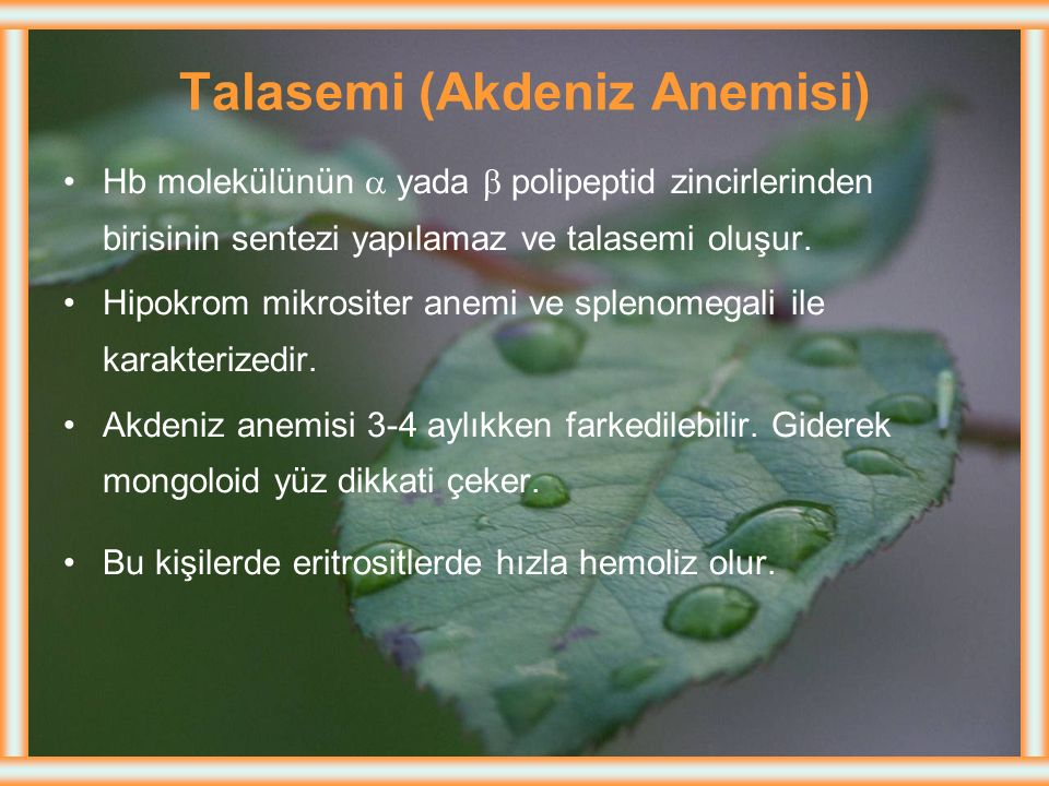 Talasemi (Akdeniz Anemisi)