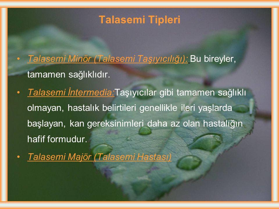 Talasemi Tipleri Talasemi Minör (Talasemi Taşıyıcılığı): Bu bireyler, tamamen sağlıklıdır.