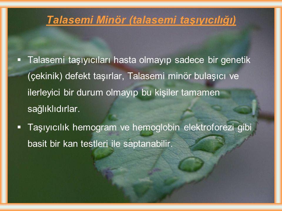 Talasemi Minör (talasemi taşıyıcılığı)