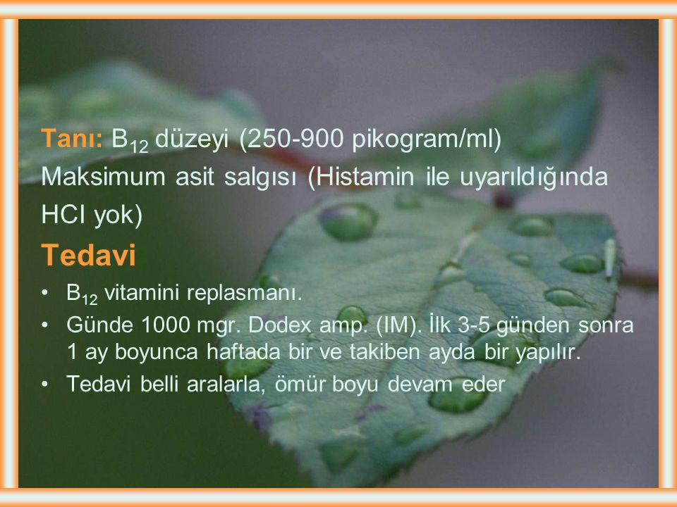 Tedavi Tanı: B12 düzeyi (250-900 pikogram/ml)