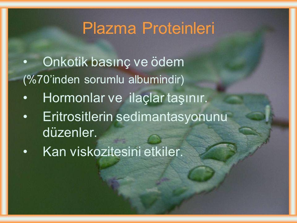Plazma Proteinleri Onkotik basınç ve ödem