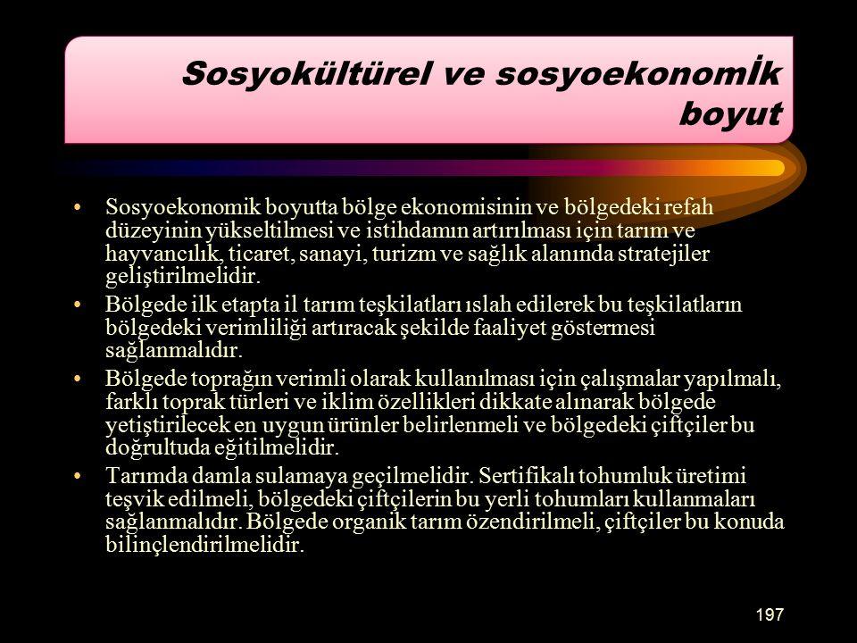 Sosyokültürel ve sosyoekonomİk boyut