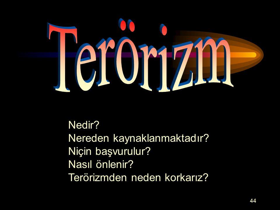 Terörizm Nedir Nereden kaynaklanmaktadır Niçin başvurulur
