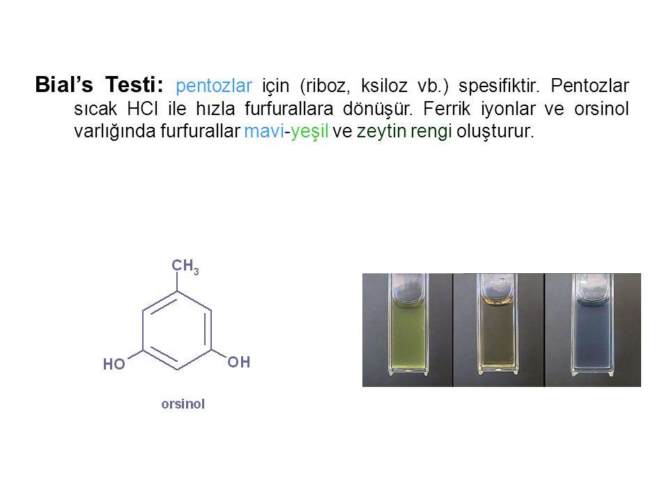 Bial's Testi: pentozlar için (riboz, ksiloz vb. ) spesifiktir