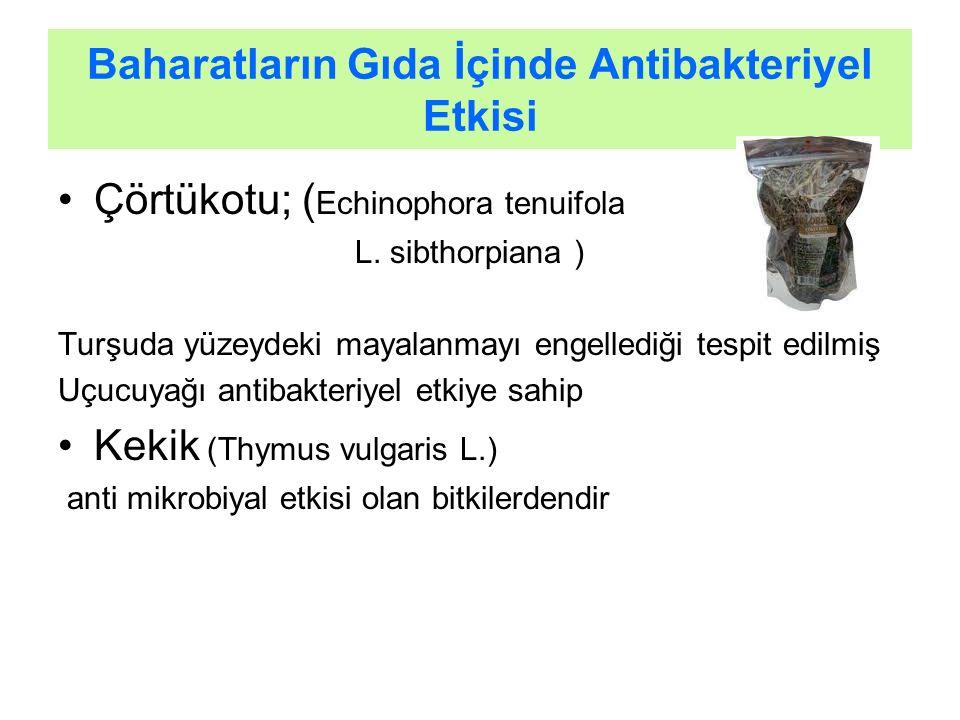 Baharatların Gıda İçinde Antibakteriyel Etkisi
