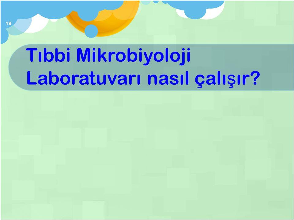 Tıbbi Mikrobiyoloji Laboratuvarı nasıl çalışır