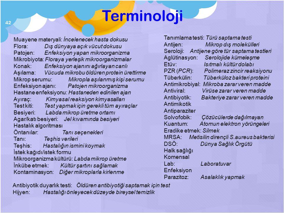 Terminoloji Tanımlama testi: Türü saptama testi